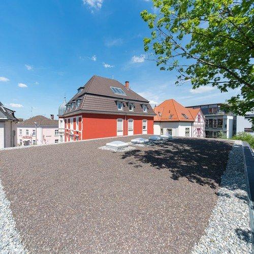 Halle in Baubuche